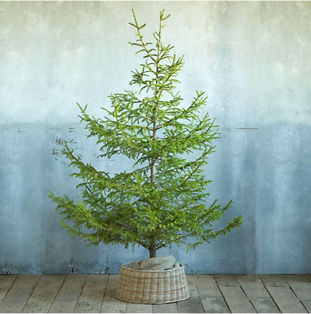 Easy Decorating Ideas: 5 Alternatives to Christmas Tree Skirts