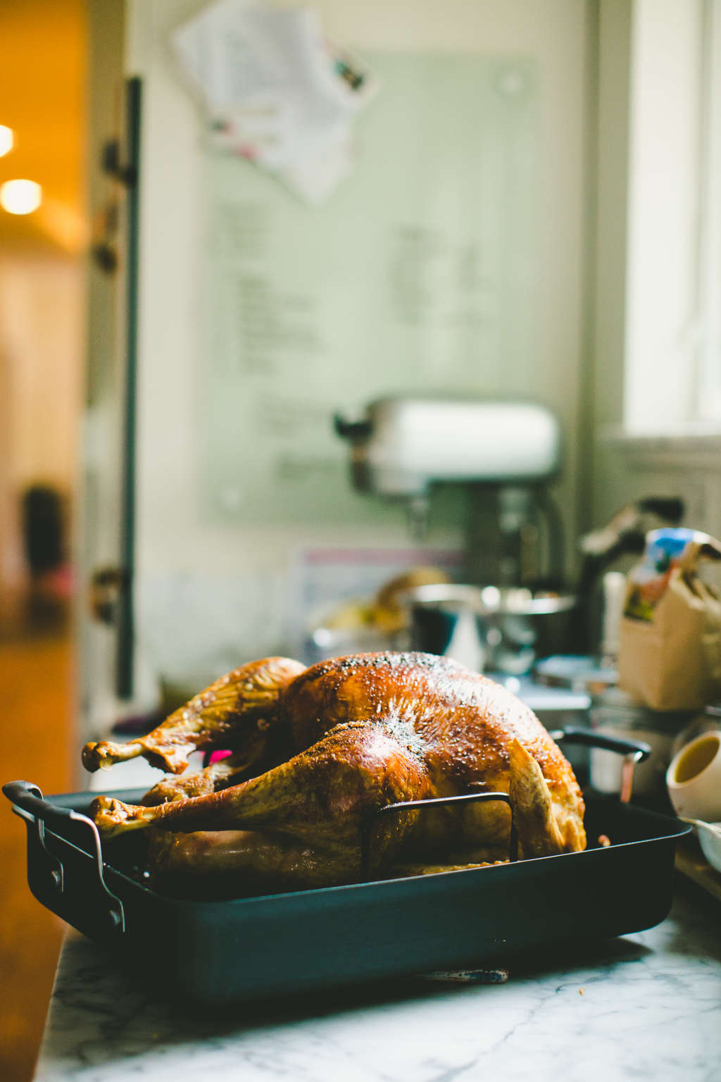 Don't Splurge On a Pan You Use Once a Year: 5 Roasters Under $50