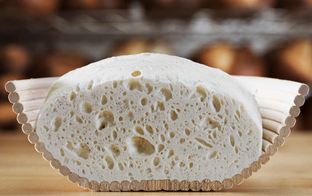 Master Sourdough Bread with Modernist Bread & Kitchn