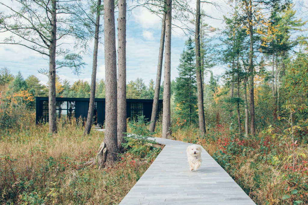 A Modern and Minimal Kit Home Is the Embodiment of Hygge
