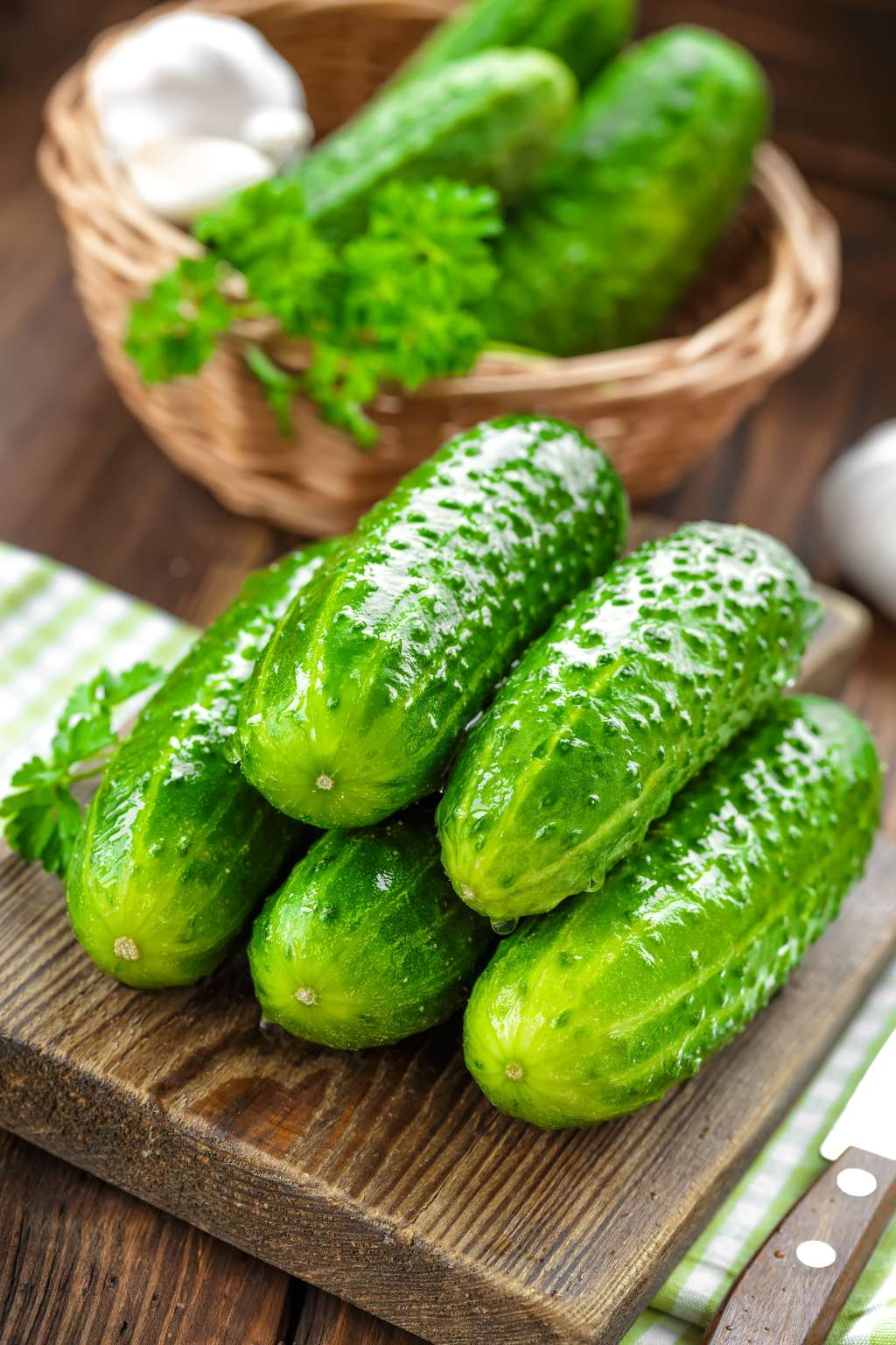 How to extend the life of cucumbers - advice for those who want to extend the fruiting cucumbers and eat them until the cold 14