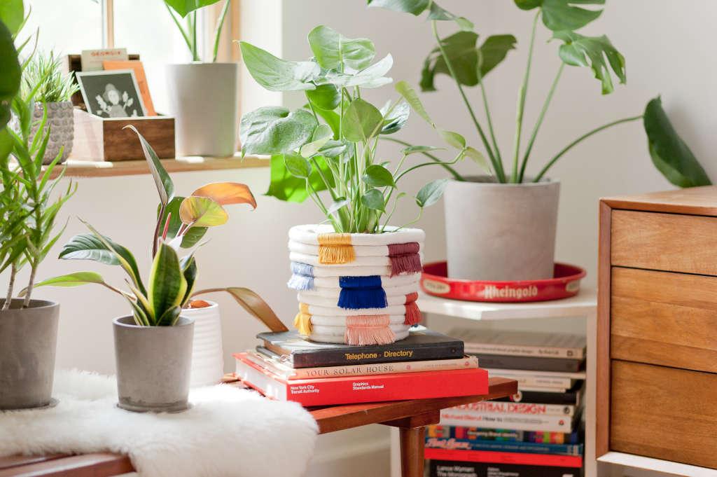 How to Make a Colorful DIY Boho Fringe Planter
