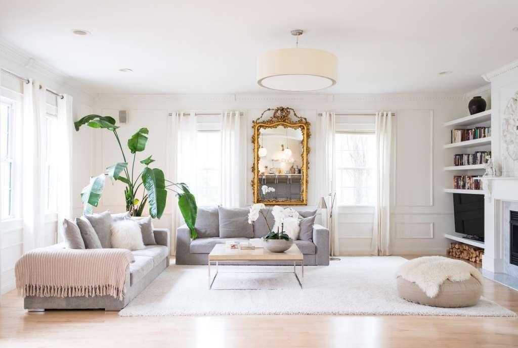 Cutaway Apartment Full Furnitures Modern Design: Large Indoor Plants - Best Houseplants