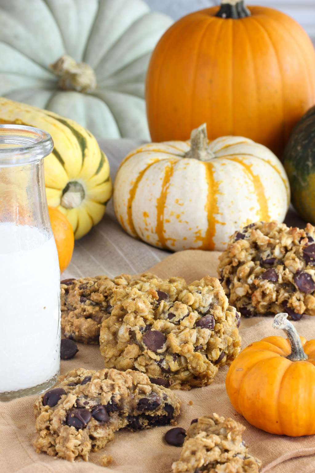 Recipe: Pumpkin Oatmeal Chocolate Chip Cookies