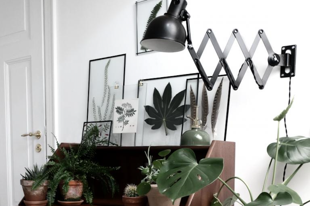 Art in an Instant: 12 Quick Ideas Using Floating Glass Frames