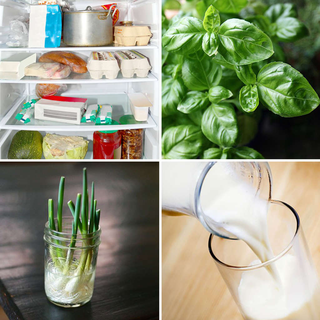 16 Foods That Ll Re Grow From Kitchen Scraps: 10 Tips To Help You Save Money And Stop Wasting Food