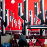 Emily & Ian's Mod and Musical Space