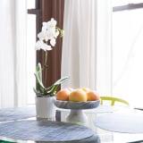 Orchid & fruit