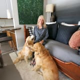 Smiling woman and two golden retrievers in micro home living room