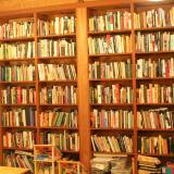 massive-bookcase-loft