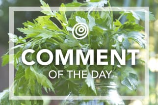 Italian Parsley - Comment of the Day
