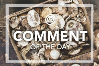Mushrooms - Comment of the Day