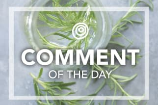 Fresh rosemary - Comment of the Day