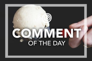 Ice Cream Scoop - Comment of the Day