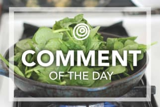 Spinach in a frying pan - Comment of the Day