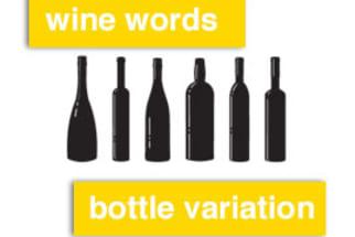 Wine Words Definition: Bottle Variation