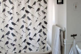 A Black & White Bird Bath