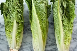 Don't You Dare Call Them Boring: Hearts of Romaine