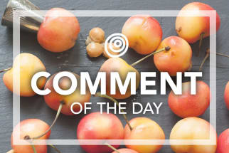 Fresh cherries - Comment of the Day