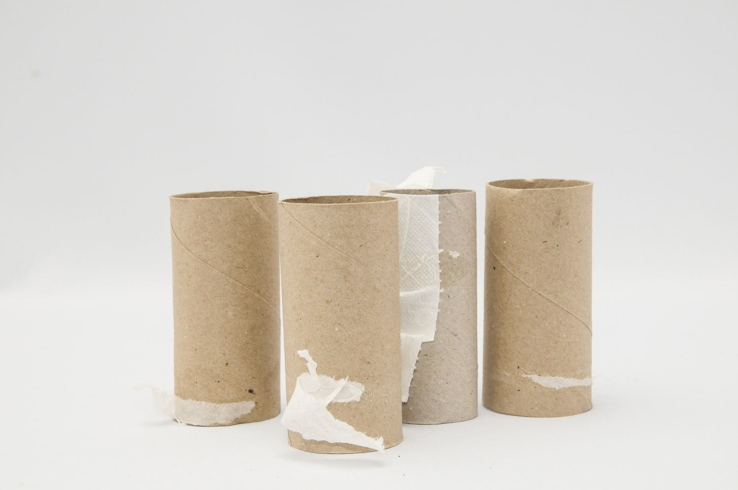 Stop Tossing Your Used Toilet Paper Roll Tubes