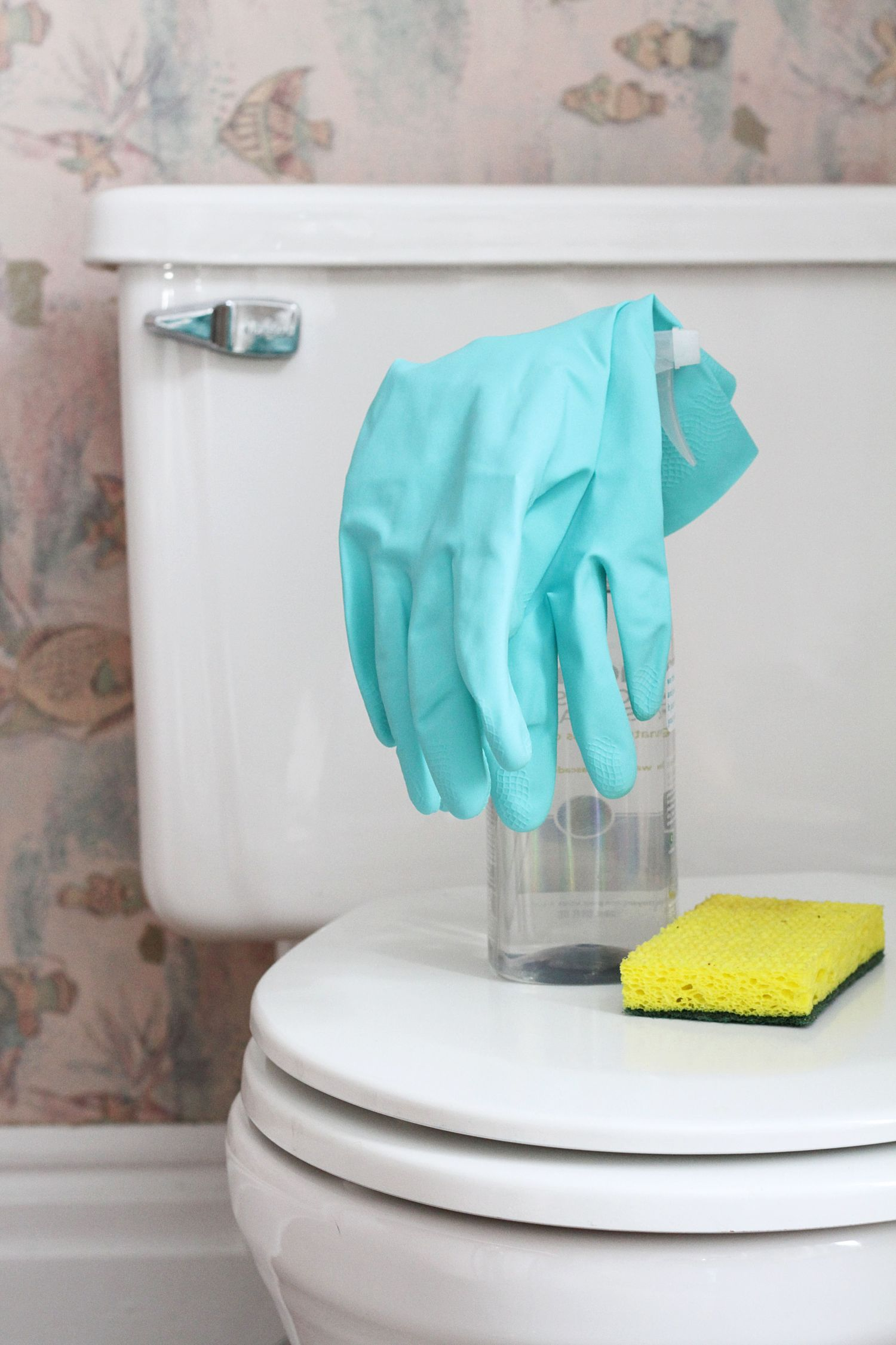 How To Clean Your Toilet Apartment Therapy