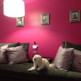 "Lisa's ""Pink Glam"" Room — Room for Color Contest"