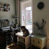 Xsusha's Creative Thinking — Small Cool Contest