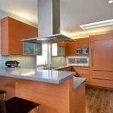 Emily's Sleek San Francisco Kitchen —  Small Cool Kitchens 2012
