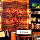 "Ashleigh's ""Bohemian Whimsy"" Room — Room for Color Contest"