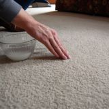 How To Clean Your Carpets Using Common Ingredients