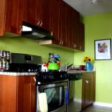 Olga's Colorful Green Kitchen —  Small Cool Kitchens 2012