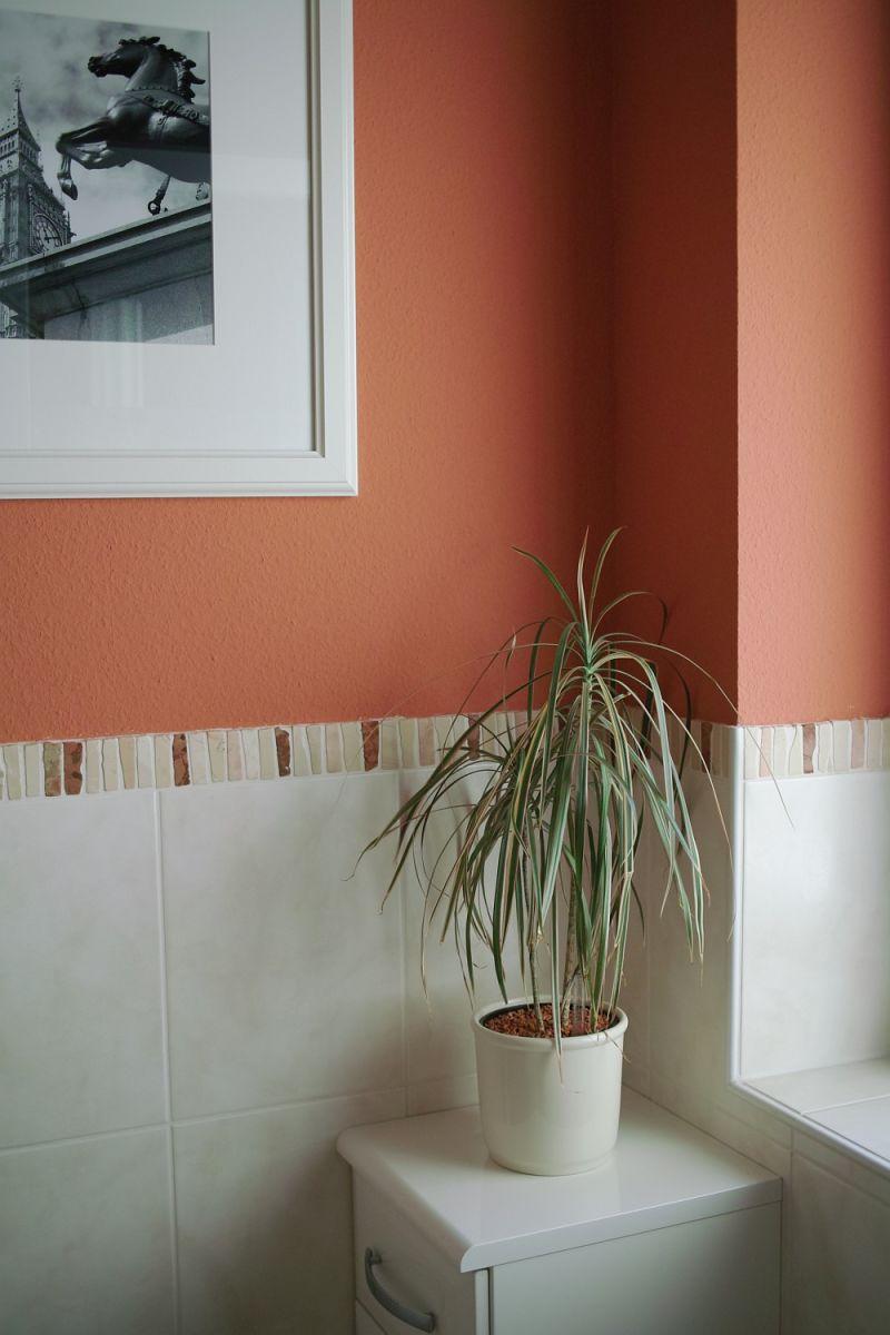 "Mihaela's ""Grenadine & White"" Room — Room for Color Contest"