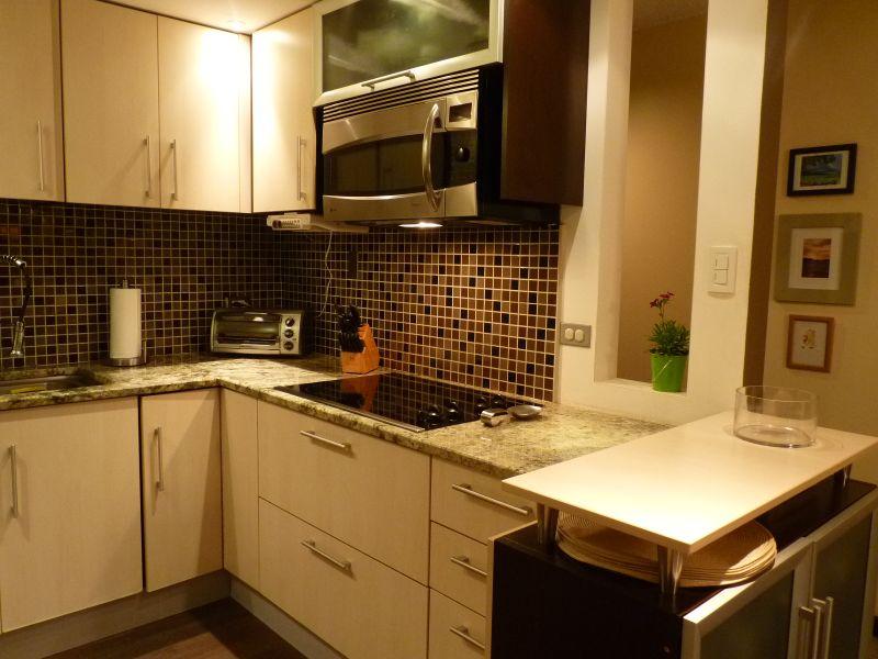 Ileana's All-Occasion Kitchen — Small Cool Kitchens 2013