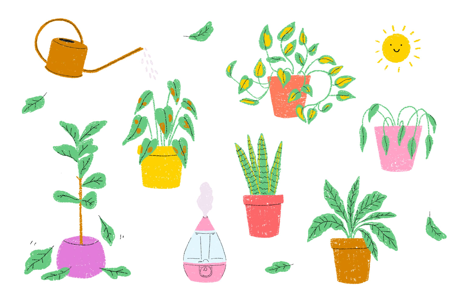 Here's What's Making Your Houseplant Sad—and How to Fix It