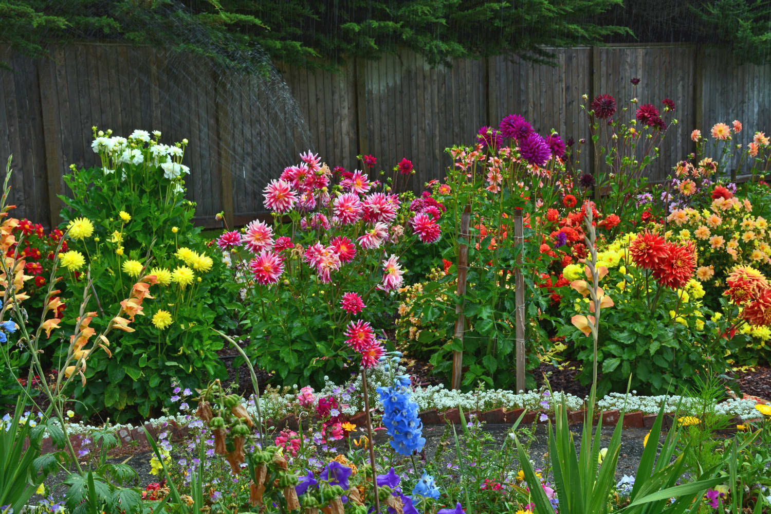 6 Things to Plant in April, from Colorful Perennials to Tasty Veggies