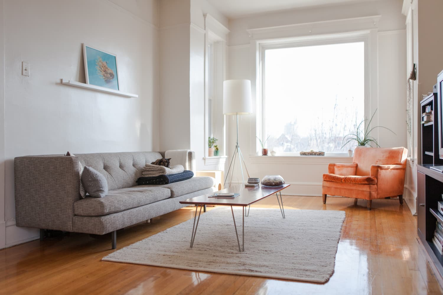 8 Solid-Color Rugs That Will Make Any Space Feel More Complete (and They're on Sale!)