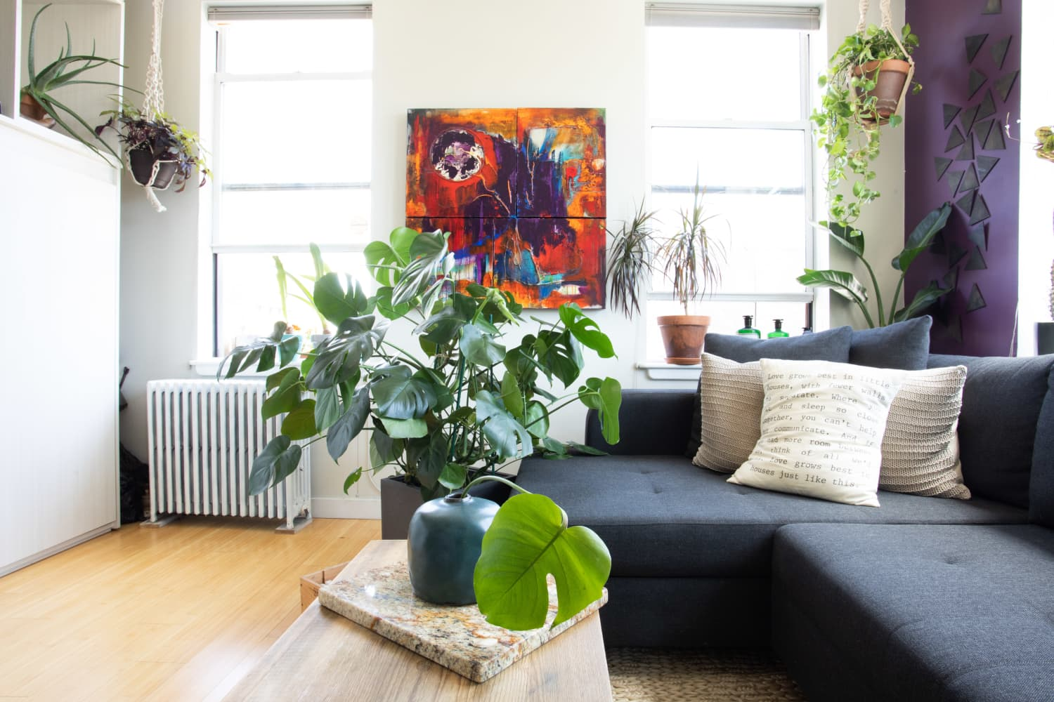Plants are Complicated—But There's One Easy Thing You Can Do That Every Houseplant Loves