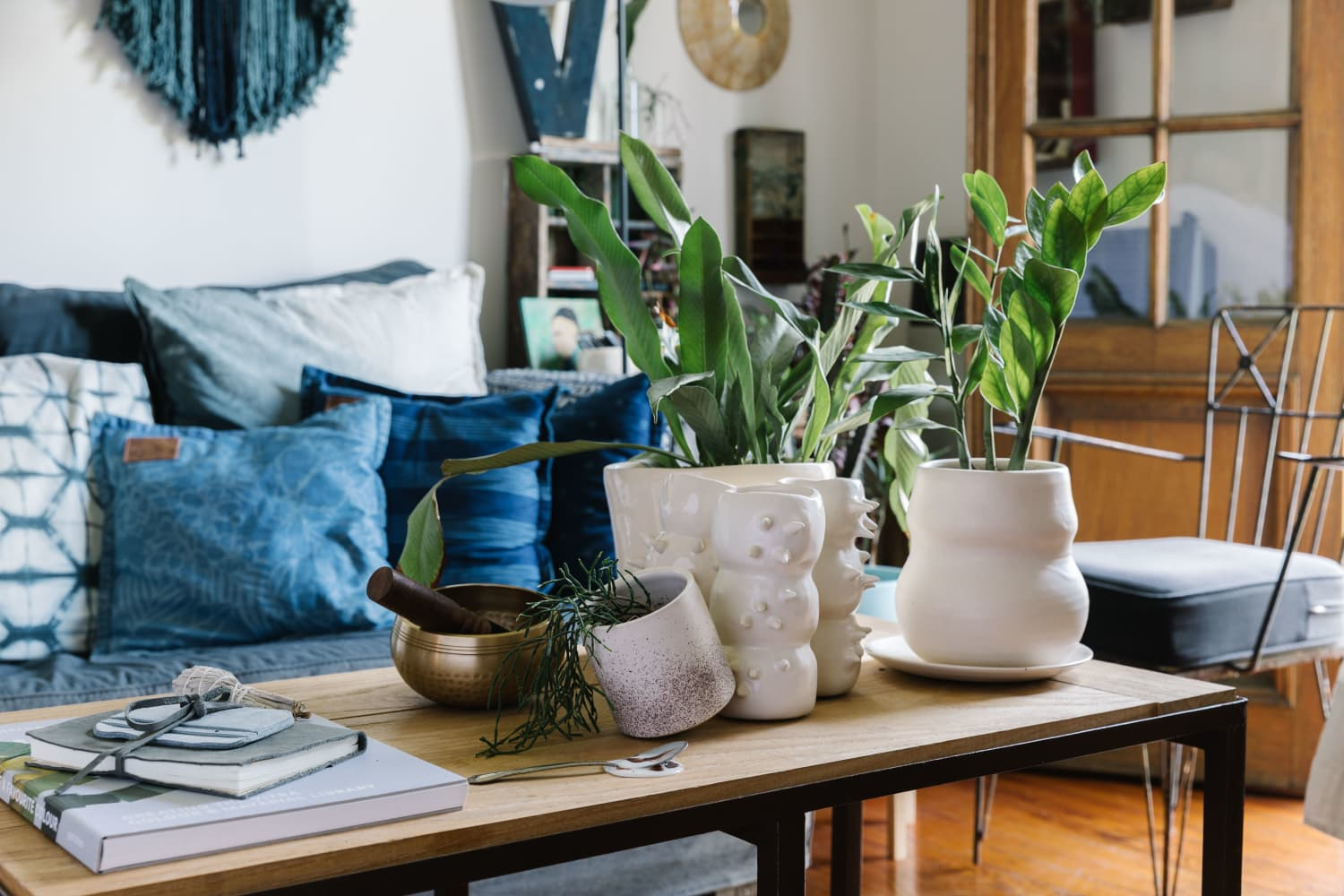 6 Plants These Houseplant Pros Will Never (Ever!) Buy Again