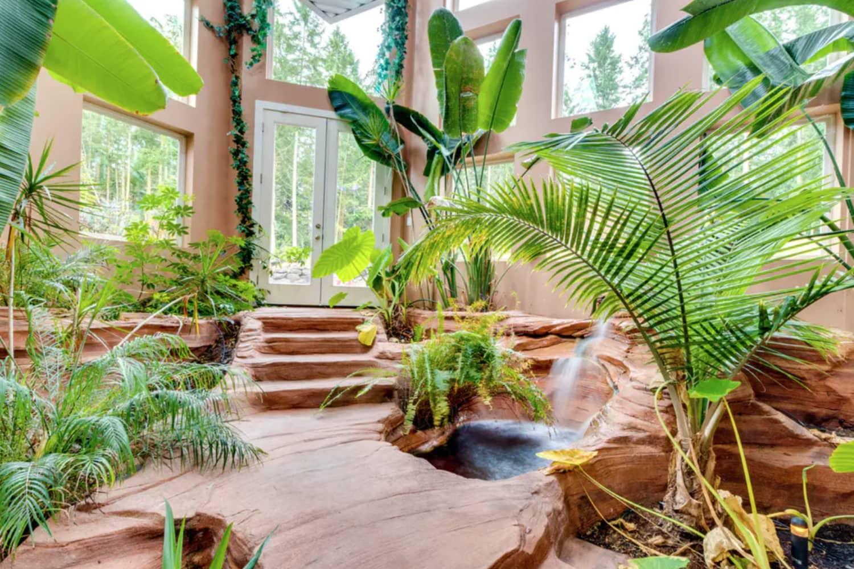 Tour a Botanical Washington Rental That Doubles as a Jungle Oasis