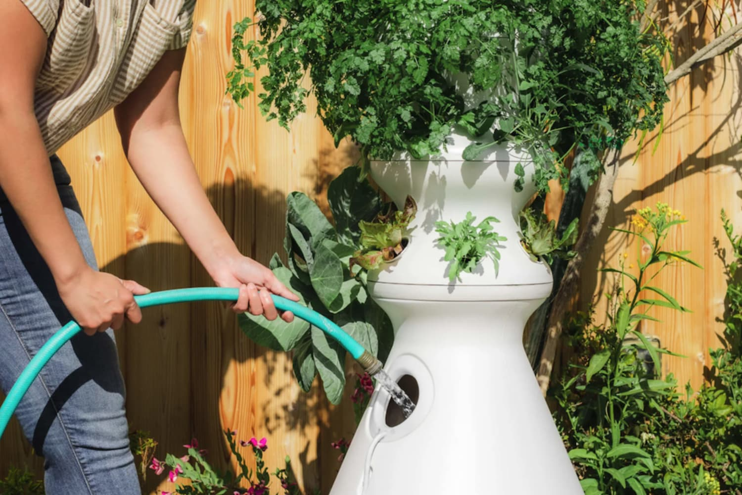 This Celebrity-Favorite Gardening System Grows Fresh Ingredients at Home