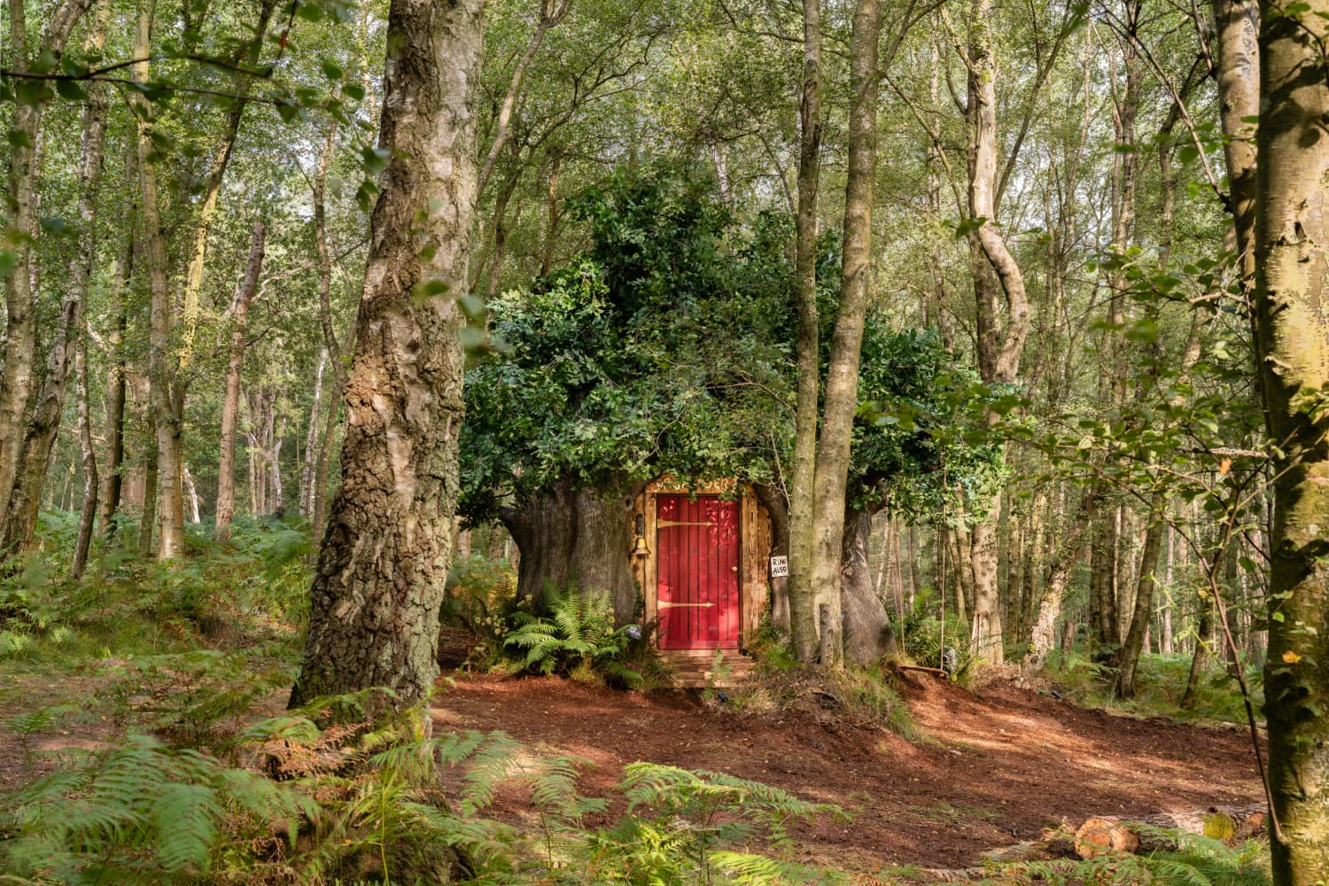 Winnie the Pooh's House Is Now on Airbnb, and It Will Make You Feel Super Nostalgic