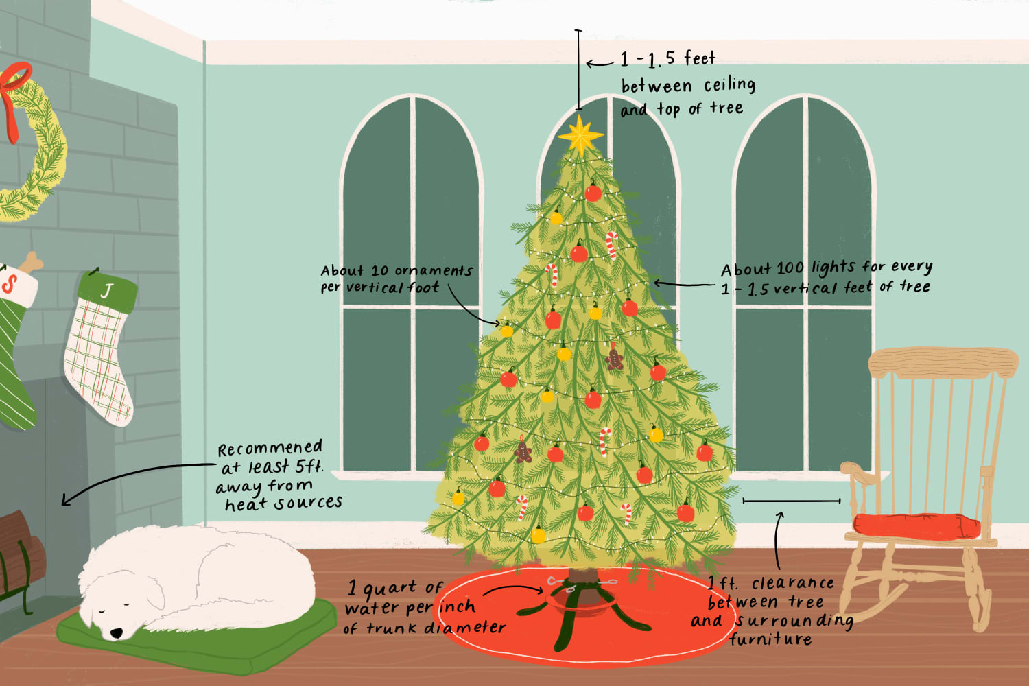 Buying a Christmas Tree? Here's Every Measurement You Need to Know