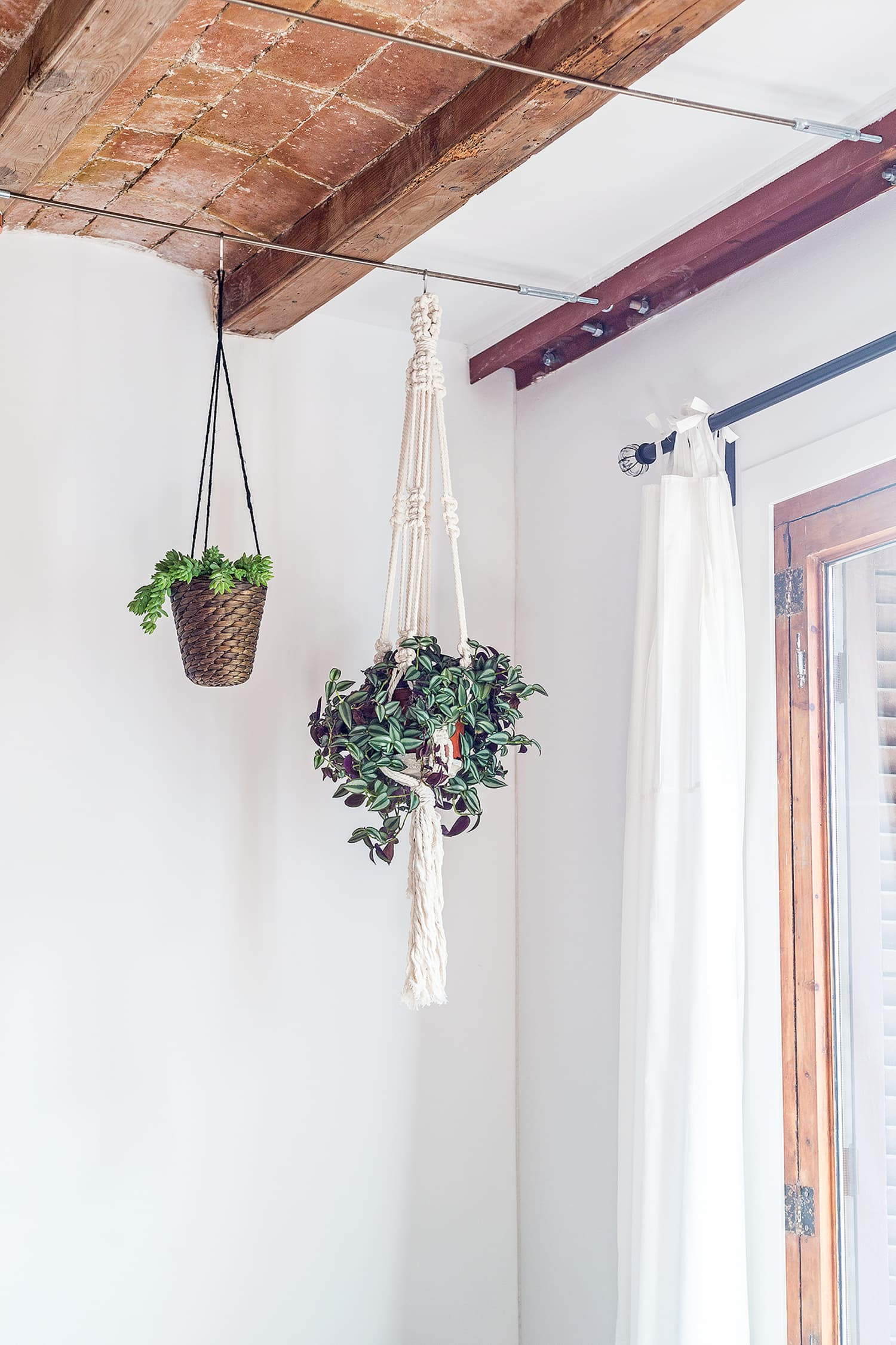 How To Hang Plants From Your Ceiling in Less than 20 Minutes