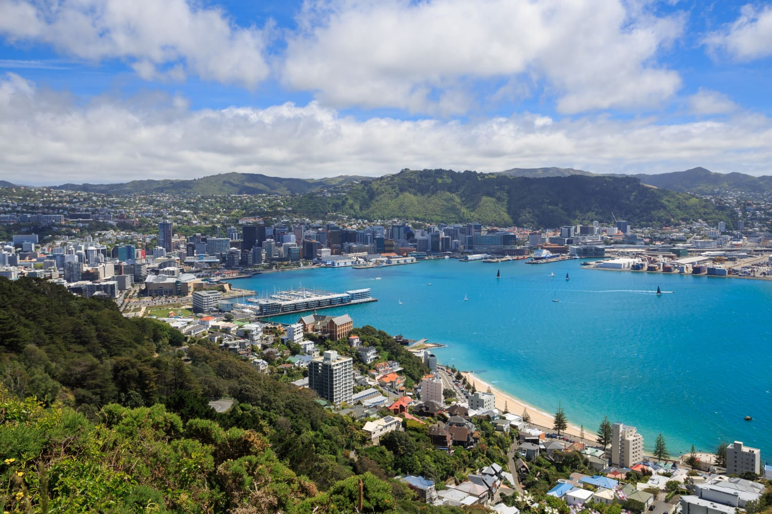 Dreaming of Moving to New Zealand? Here's What to Know If You're American