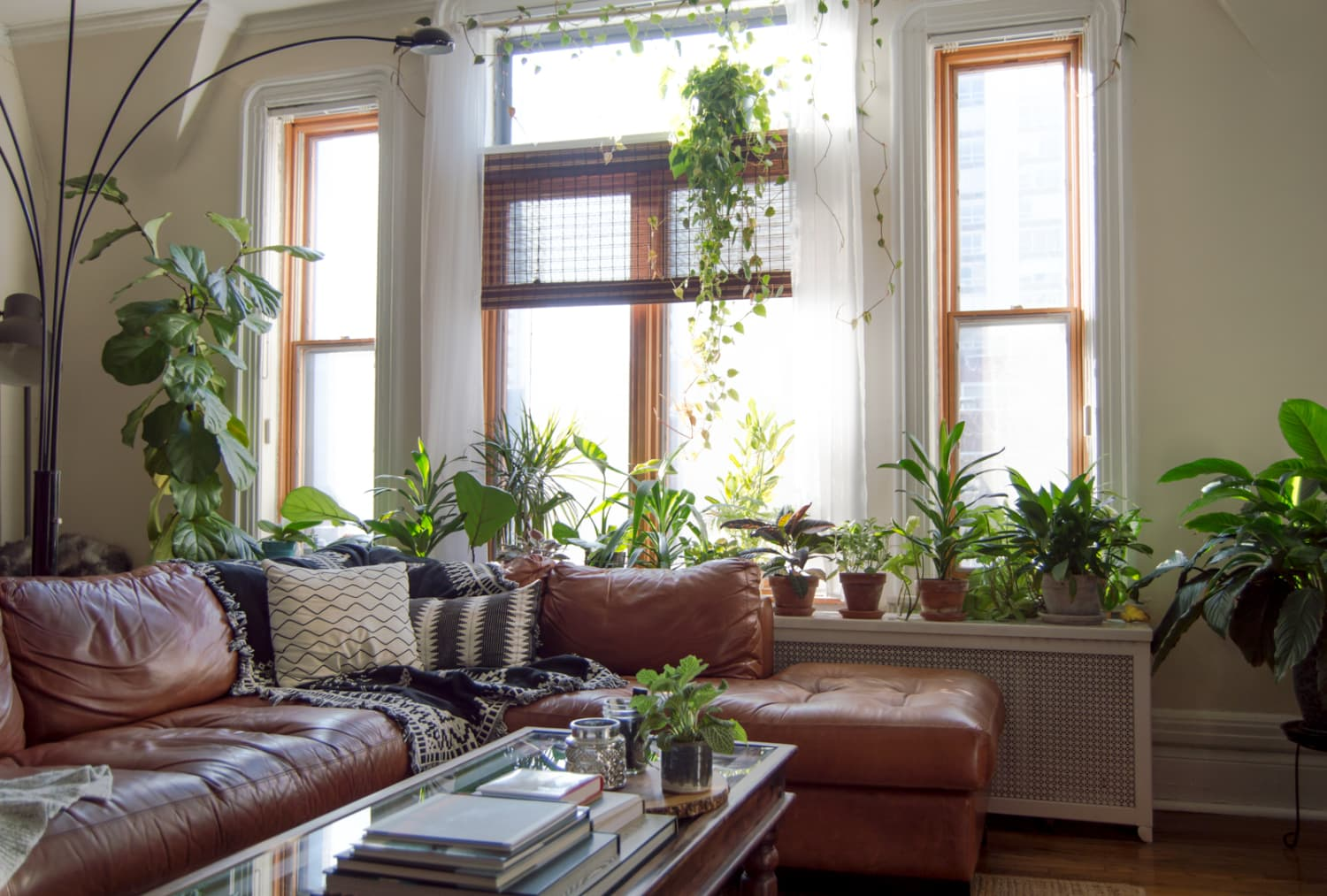 An Avid DIYer Brings the Outdoors In With Plants and Rustic Decor