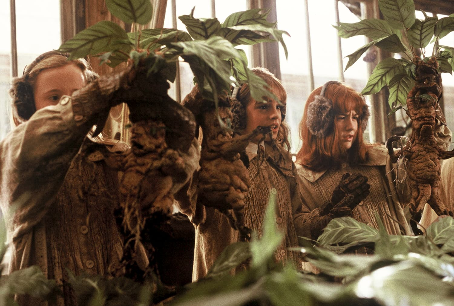 Etsy Harry Potter Mandrake Plants Apartment Therapy