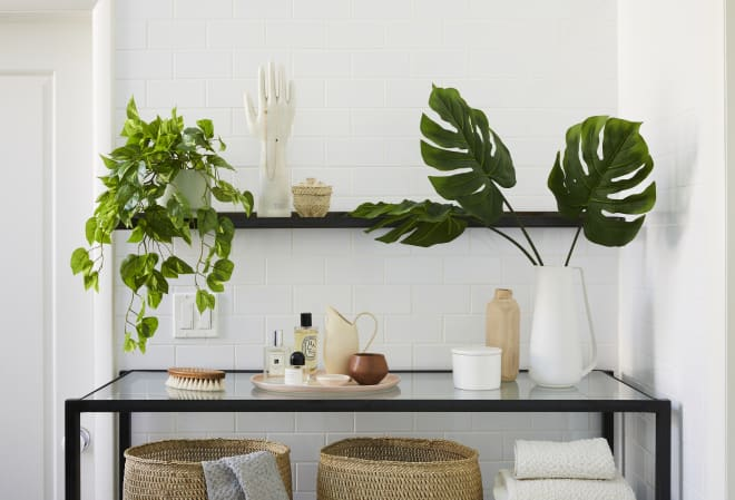 The Sill Just Launched a Line of Faux Plants, And They Look Real