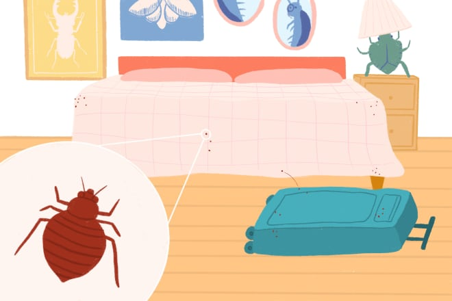 The First 8 Things To Do If You Think You Might Have Bed Bugs