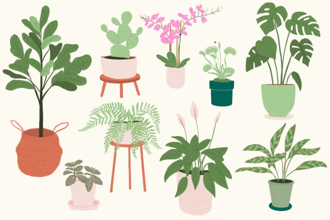 The Best Plant for Every Enneagram Type