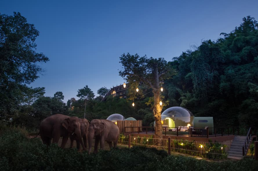 Image: Anantara Golden Triangle Elephant Camp & Resort